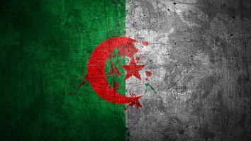 algerian_flag_by_gawrifort-d5pk3qg