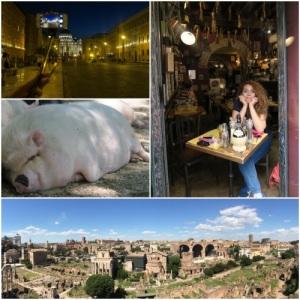 Aşağıdaki fotoğraf Roma Forum'unun panaromik görüntüsüdür.